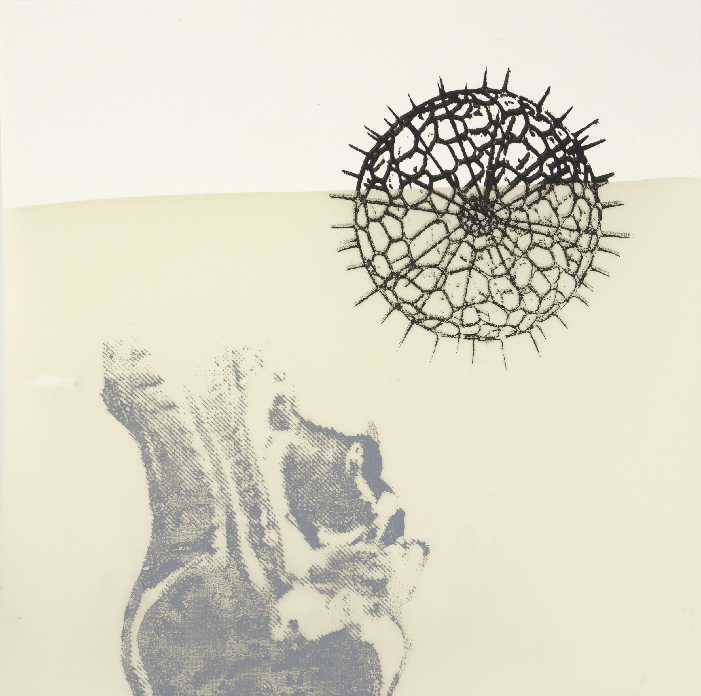 experimenteller siebdruck freie kunst akademie augsburg. Black Bedroom Furniture Sets. Home Design Ideas